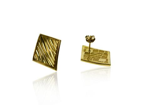 Kolczyki pozłacane Baltic Gold